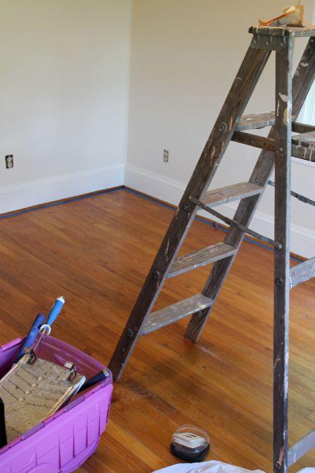 Ladder:Paint